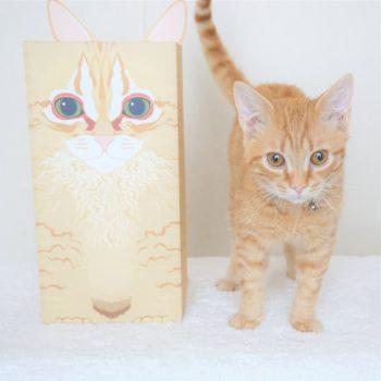 当社のマスコット猫とその似顔絵が描かれた当社オリジナルのお骨箱カバーが並んで立っている