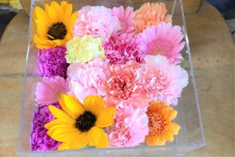 アクリルケースに納められた向日葵などの色とりどりの花々。
