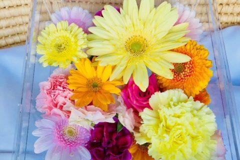 アクリルケースに納められた黄色いガーベラなどの色とりどりの花々。