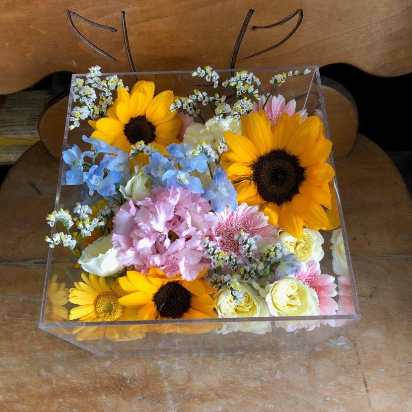 アクリルケースに収められた向日葵などの花々